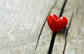 heart and wood