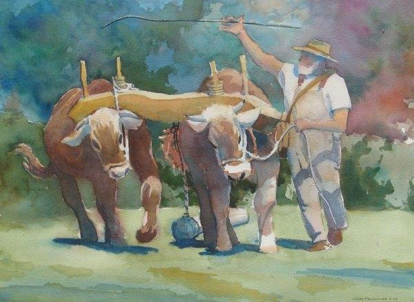 yoke-of-oxen