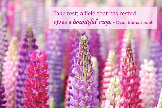 take-rest-by-ovid