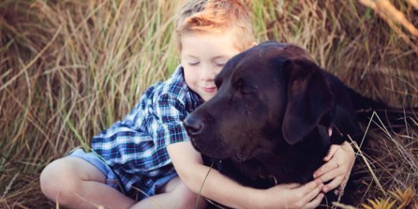hug boy and dog huffington post