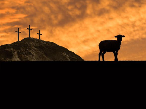 lamb of god with crosses