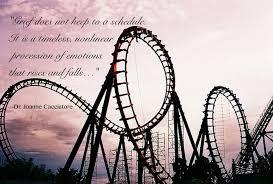 roller coaster 2 better image
