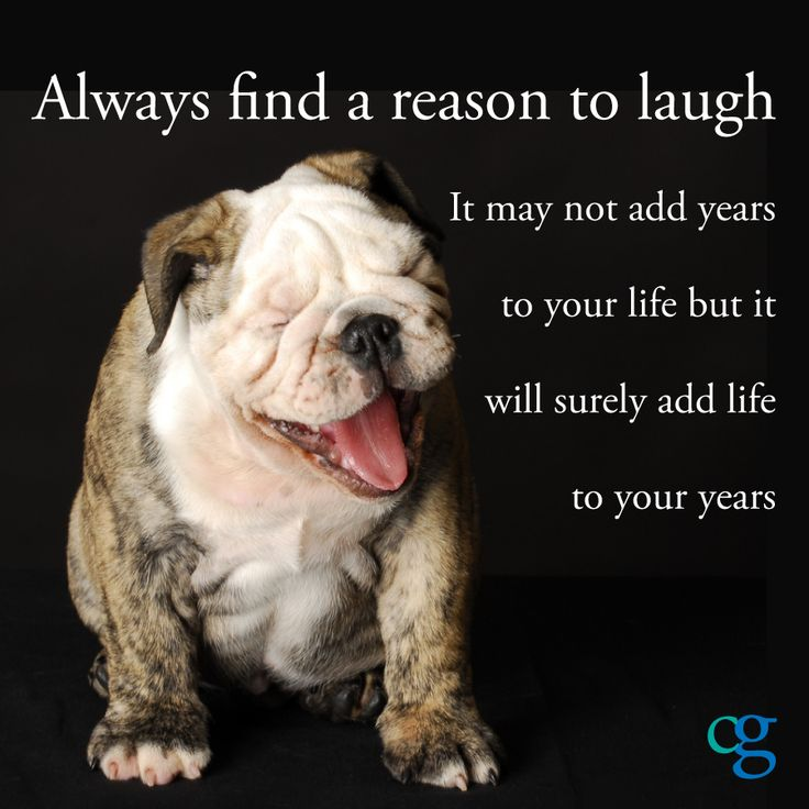always find a reason to laugh