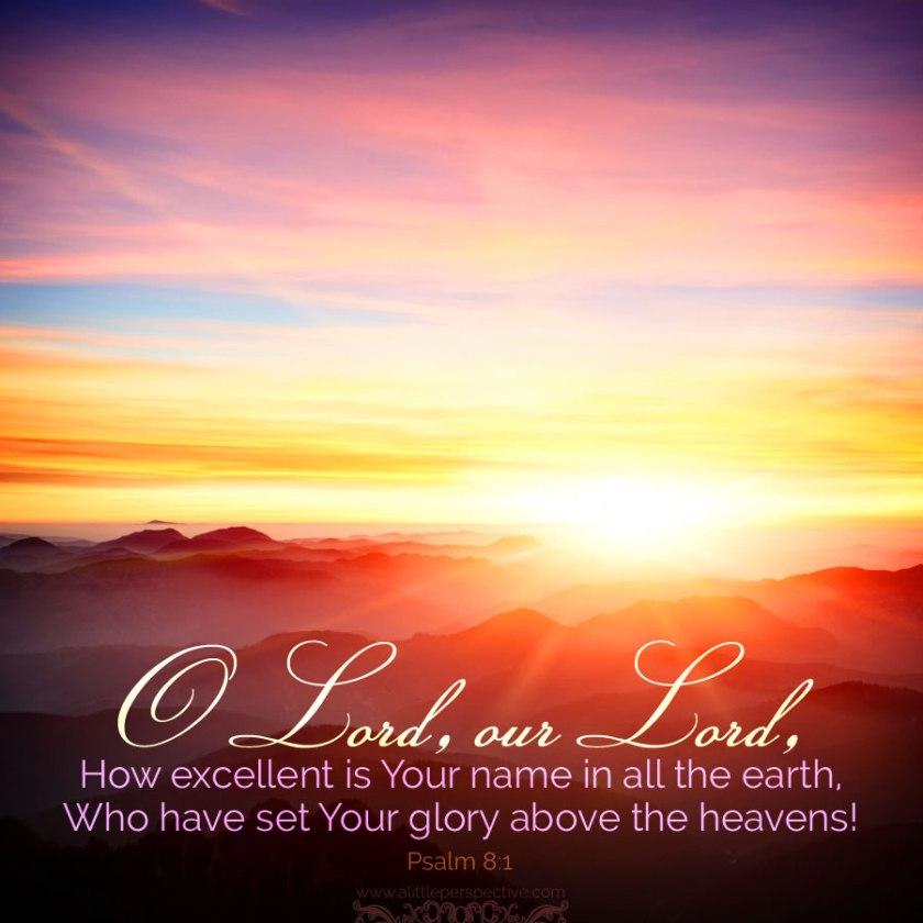 psalm 8_1