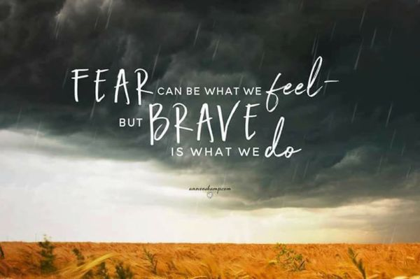 fear is what we feel brave is what we do