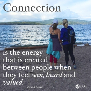 connection brene brown