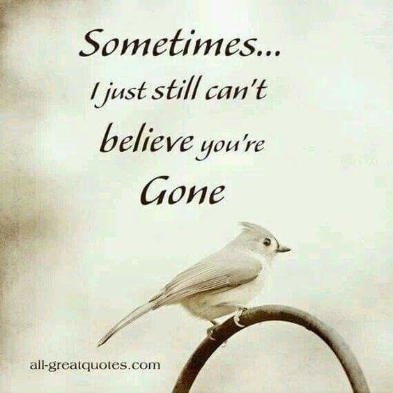 sometimes cant believe you are gone