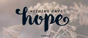 holding onto hope dandilion