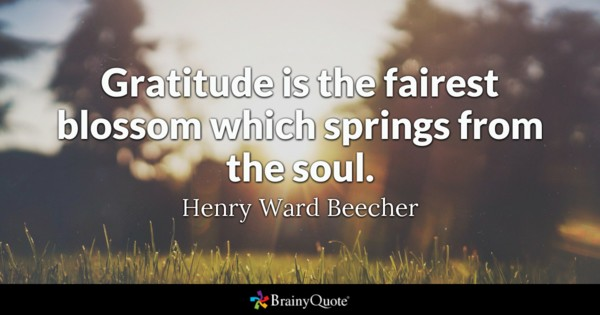 gratitude is the fairest blossom