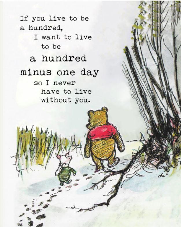 winnie the pooh 100 minus one day
