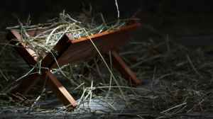 manger empty