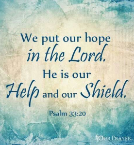 put our hope in the lord he is our shield