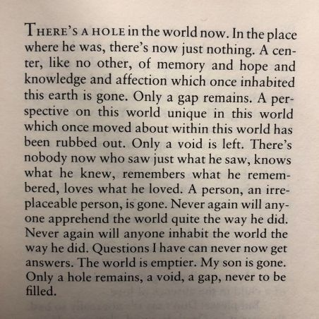 nicolas wolterstorff theres a hole in the world