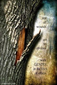 walk gently tree bark