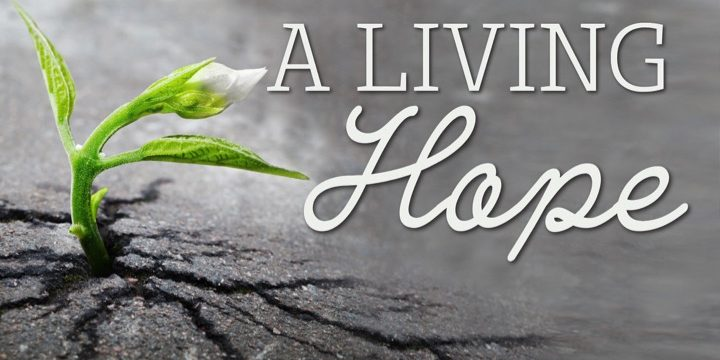 Scripture Journal Challenge:  A Living Hope