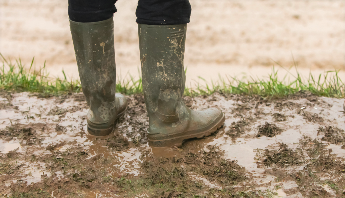 How Deep Is The Mud? Depends On Who YouAsk.
