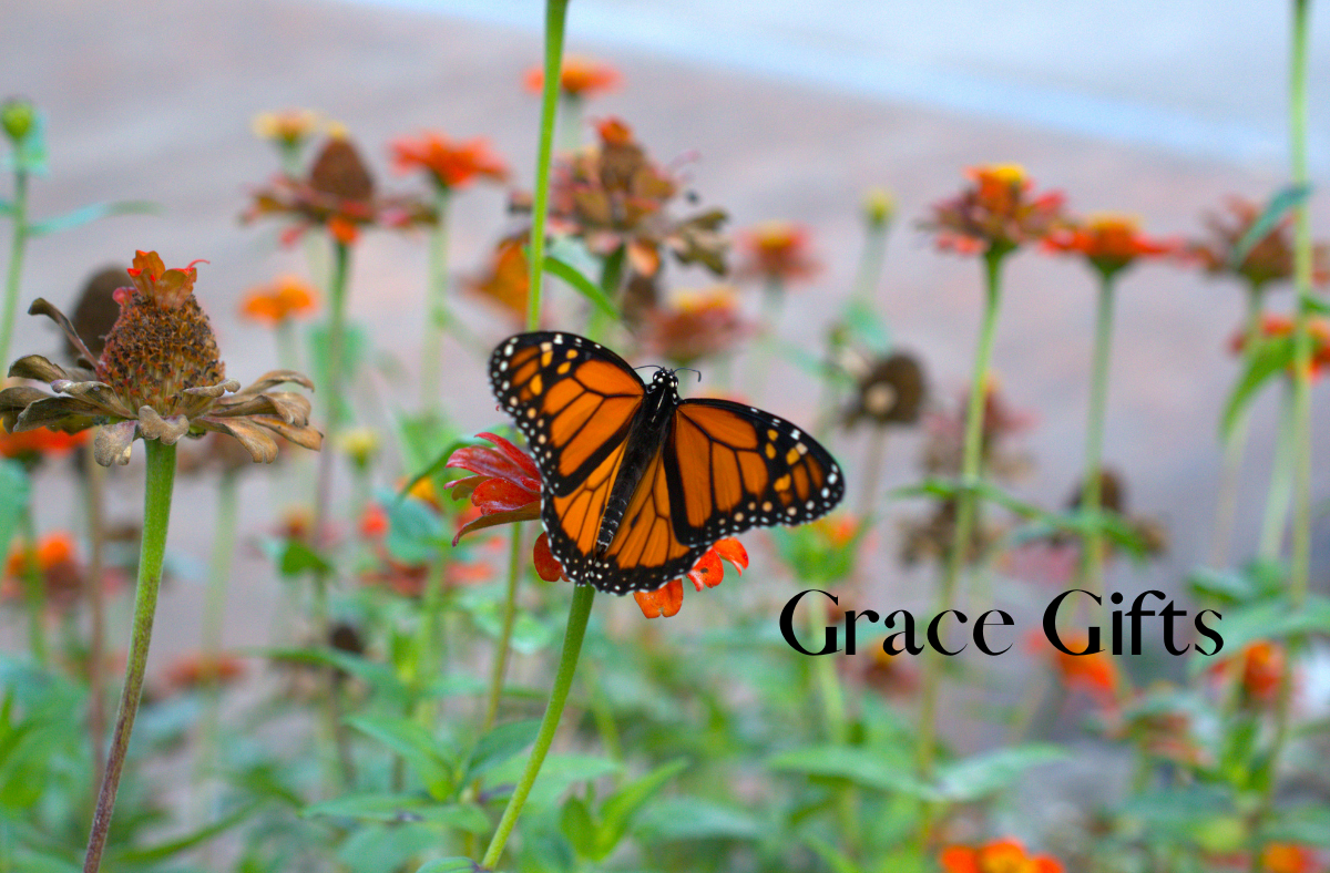 Gifts Of Grace InGrief